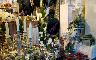 Fioreria Zaggia: il fascino dei fiori